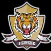 Tigres FC Logo