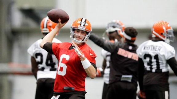 Browns Pick Hoyer As QB