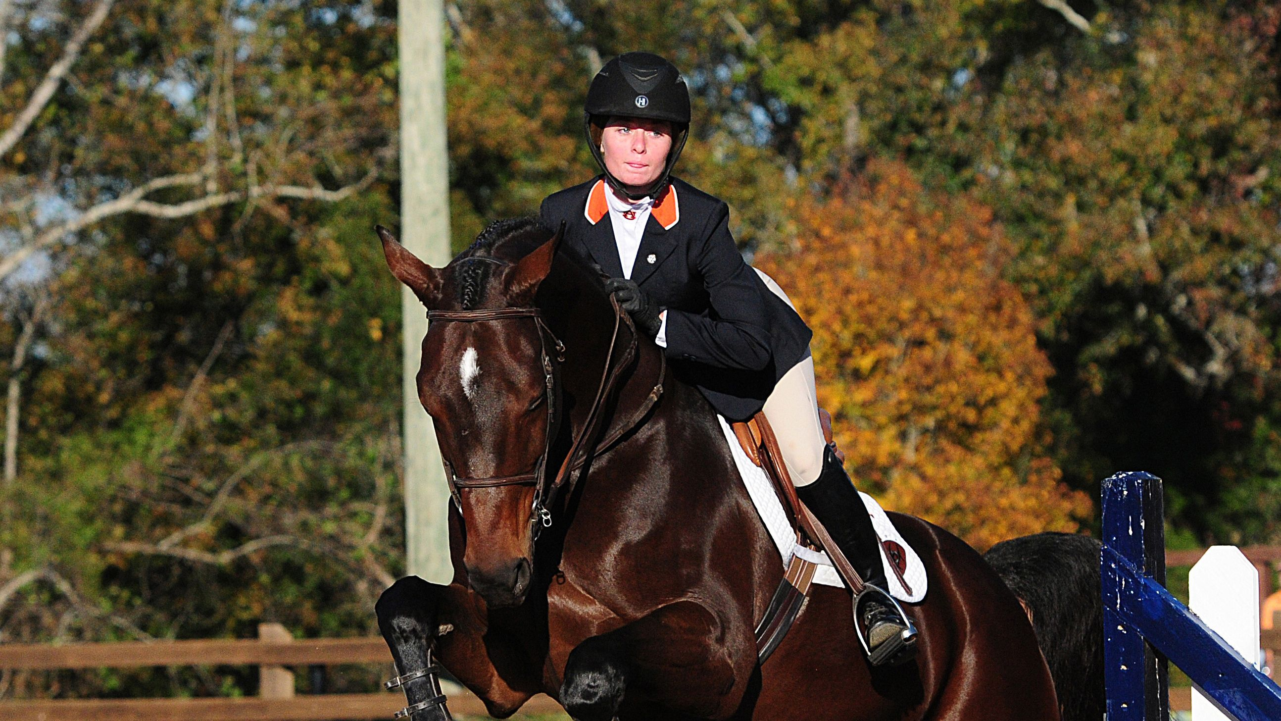Two SEC equestrian athletes named NCEA Riders of the Month