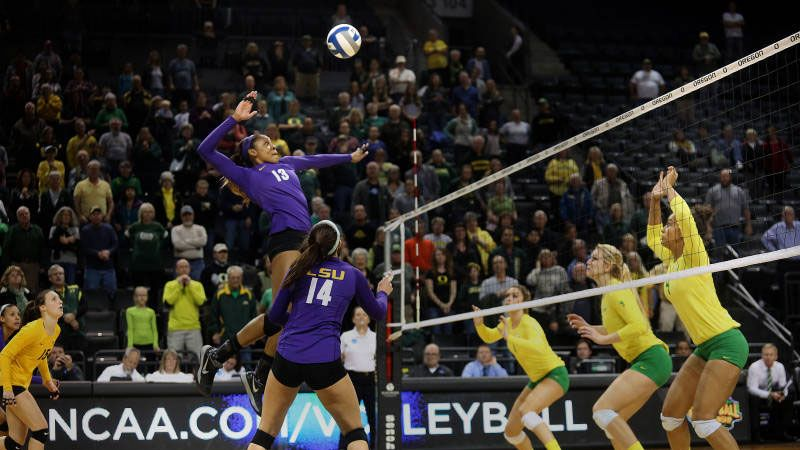 Avca All America Teams Announced