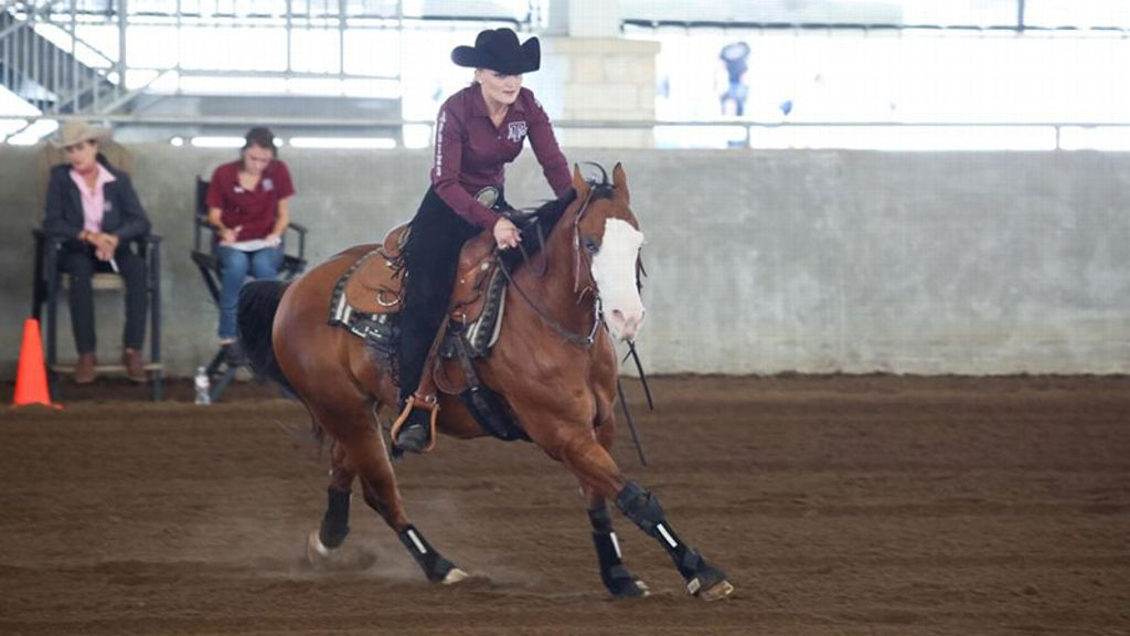 Texas A Amp M Equestrian Clubhouse Latest Headlines