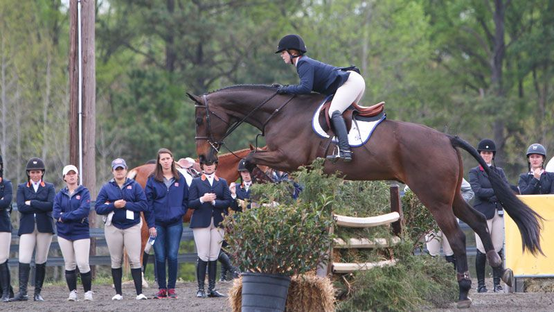 Auburn, Georgia advance to SEC Equestrian finals