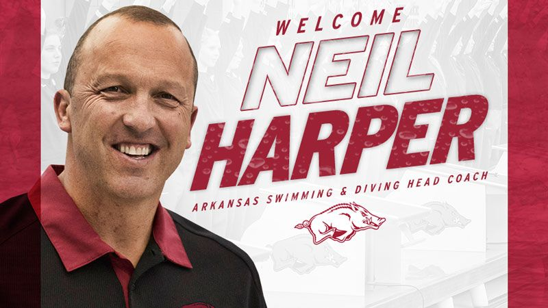 Harper to lead Arkansas Swimming and Diving