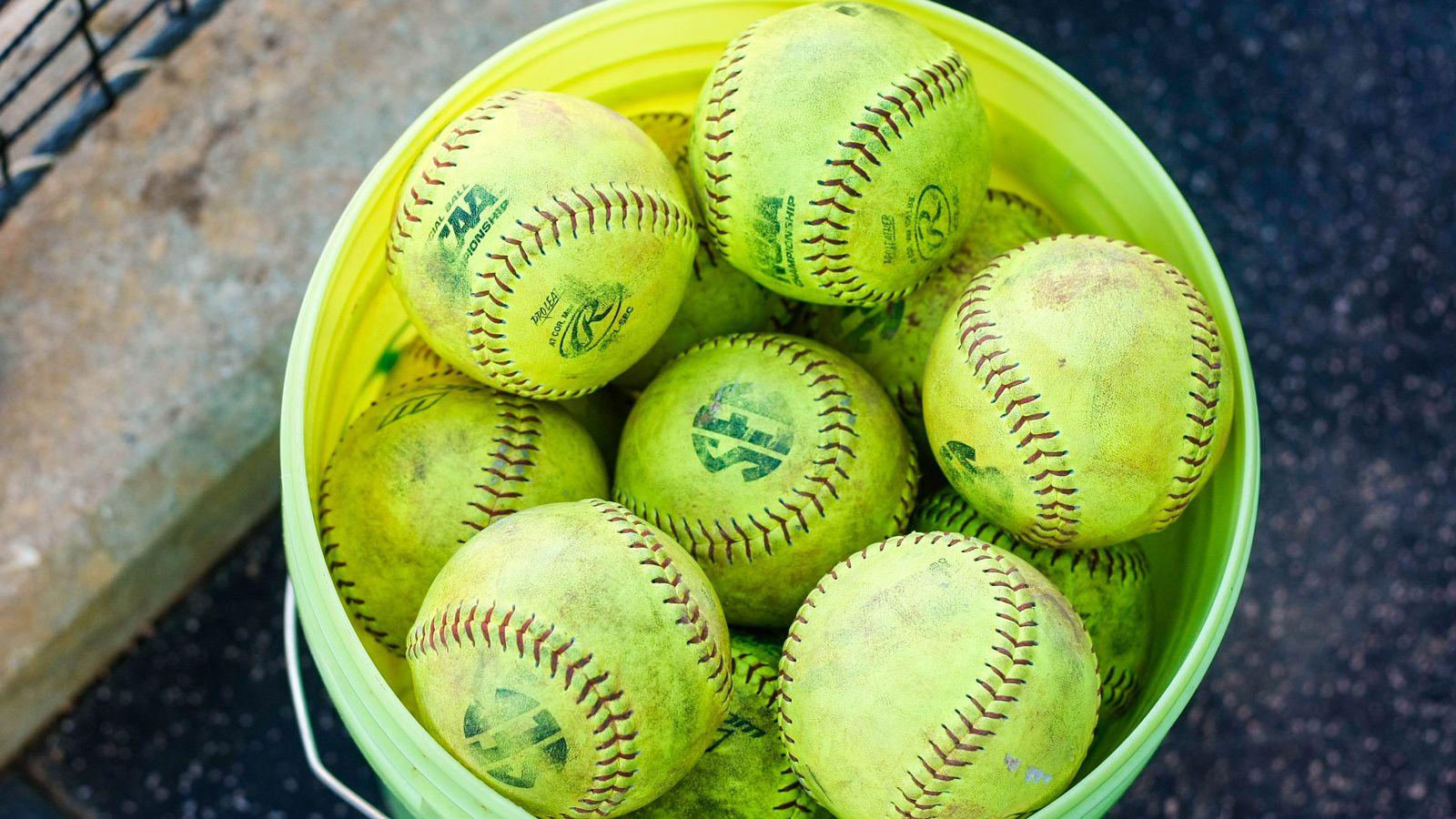 110 from SEC softball programs named Scholar-Athletes