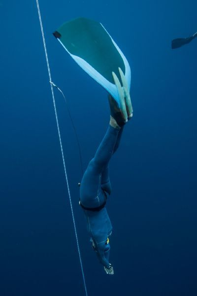 In the first 20 meters of a dive, Kerry Hollowell uses the air in her mouth to pop her ears in order to keep her eardrums from bursting.