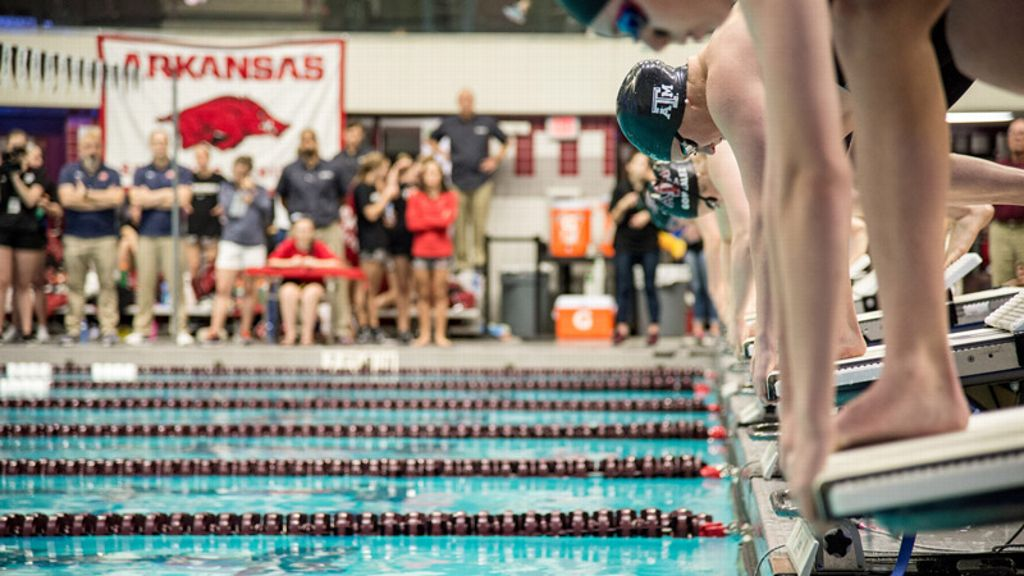 Swim and Dive Scholar-Athletes of the Year announced