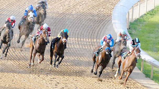 Danza upsets the 2014 Arkansas Derby.