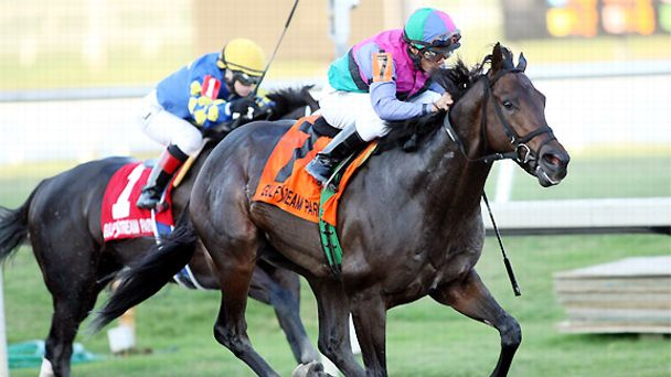 Itsmyluckyday upsets Shanghai Bobby to win the 2013 Holy Bull Stakes.
