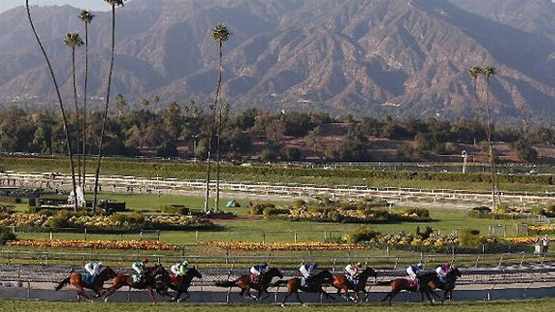 Contenders for the Breeders' Cup Mile run against the backdrop of beautiful Santa Anita.