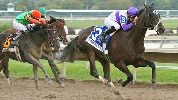 Handsome Mike wins the 2012 Penn Derby at Parx Racing.