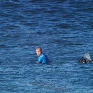Mick Fanning versus shark