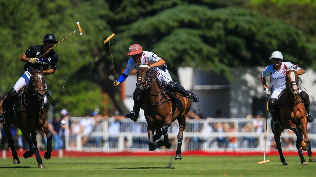 Ellerstina vs. Chapaleufú