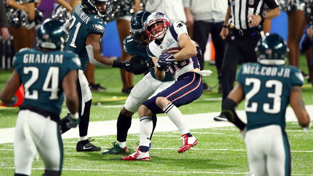 Danny Amendola, WR, New England Patriots