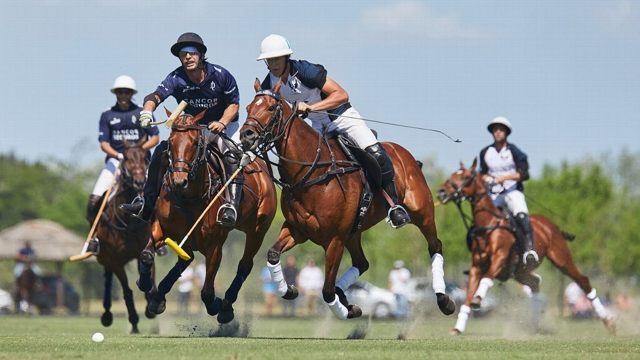 LA DOLFINA POLO RANCH 17 vs. LA ENSENADA 10