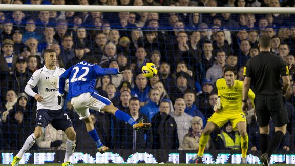 Steven Pienaar scored Everton's winning goal against Tottenham