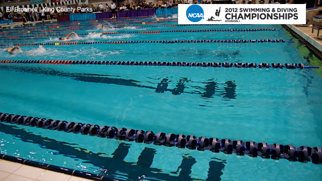 NCAA Men's Swimming & Diving Championships presented by Enterprise Rent-A-Car (Day 2)