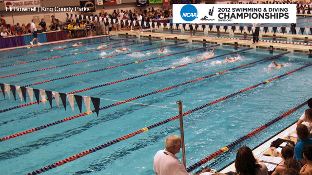 NCAA Men's Swimming & Diving Championships presented by Enterprise Rent-A-Car (Day 3)