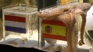 El pulpo Paul, el oráculo animal del acuario Seelife de Oberhausen (oeste de Alemania), predijo la victoria de España en la final contra Holanda del Mundial de Fútbol de Sudáfrica el próximo domingo.