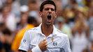 Novac Djokovic vino de atr�s para vencer a Federer y clasificar a la final