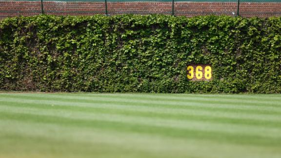 Video - Men Arrested For Trying To Steal Wrigley Ivy