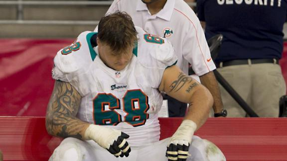 Video - Dolphins Suspend Incognito