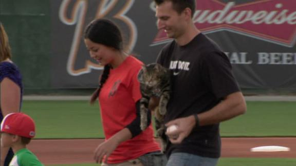 http://a.espncdn.com/media/motion/2014/0520/dm_140520_sc_hero_cat_first_pitch/dm_140520_sc_hero_cat_first_pitch.jpg