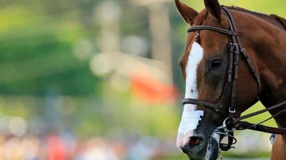California Chrome's Nasal Strip Approved