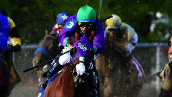 Skechers Signs California Chrome