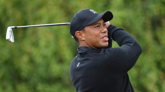 Tiger Trying To Figure Out Course