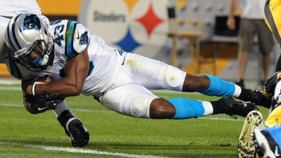 Panthers Blank Steelers