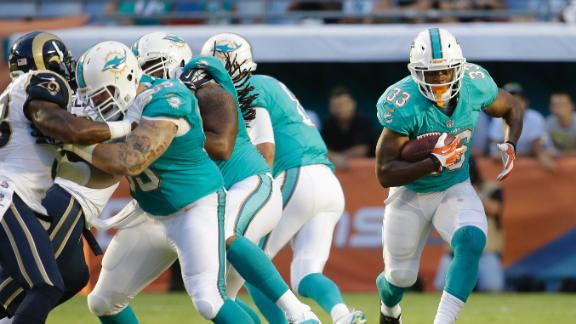 Dolphins Who Impressed