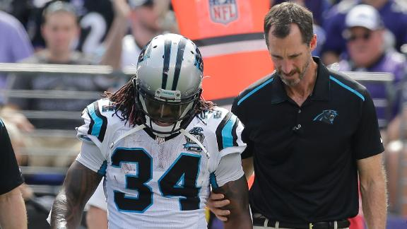 DeAngelo Williams Doubtful