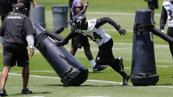 Video - Ravens' above-average offseason grade could lead to division titl...