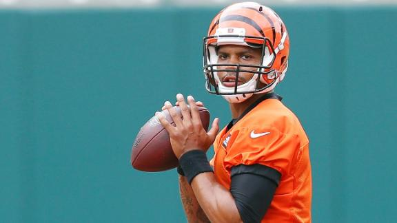 Video - Terrelle Pryor the focus of Browns camp