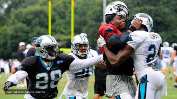 Panthers close practice with message of 'family' after scuffle
