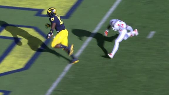 Michigan coach Jim Harbaugh says the replay decision to uphold call was 'worst call he's ever seen'