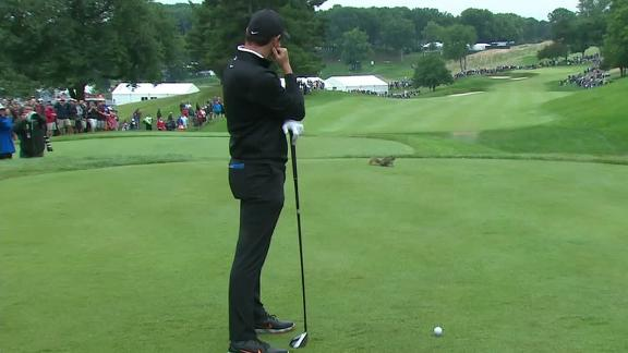Squirrel wreaks havoc on Rory's first tee shot