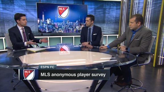 What stands out in the MLS player survey?