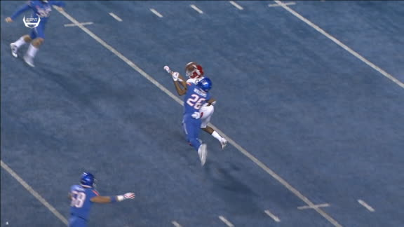 Boise State fan goes crazy after fourth-down stand
