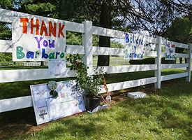 Signs for Barbaro