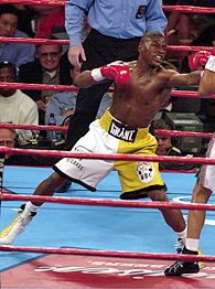 Mayweather vs. Castillo