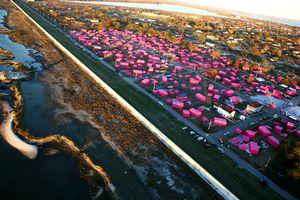 Pink Tarp Houses