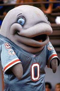 Miami Dolphins mascot