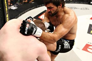 Arlovski and Nelson
