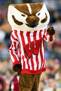 Bucky Badger