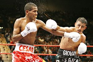 http://a.espncdn.com/photo/2009/0105/boxing_a_segura_300.jpg