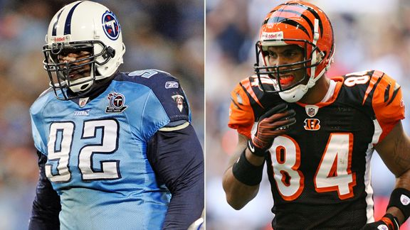 Albert Haynesworth, T.J. Houshmandzadeh