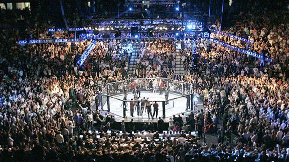 UFC Fan