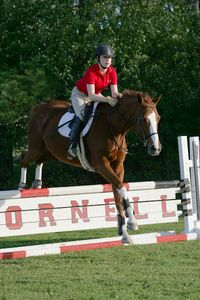 Cornell Equestrian