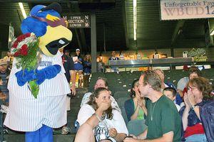 Ballpark Proposal